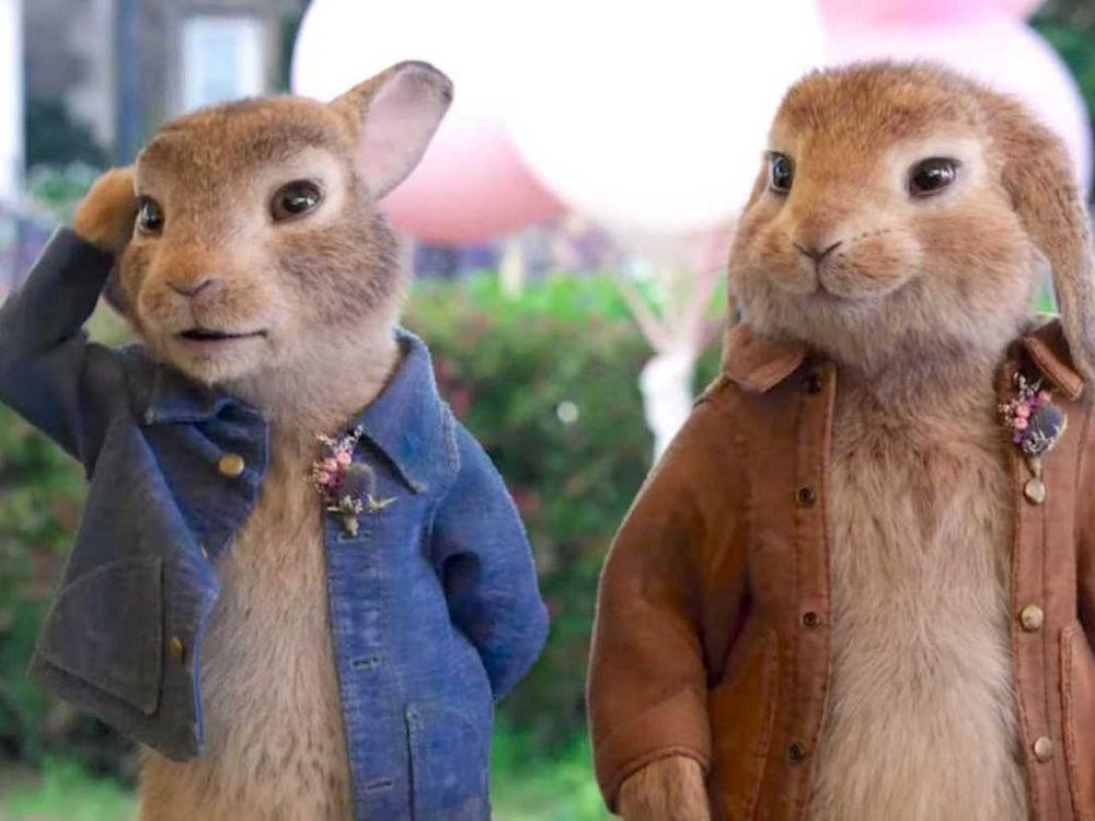 Piotruś Królik 2: Na gigancie - jakim króliczkiem chce być?