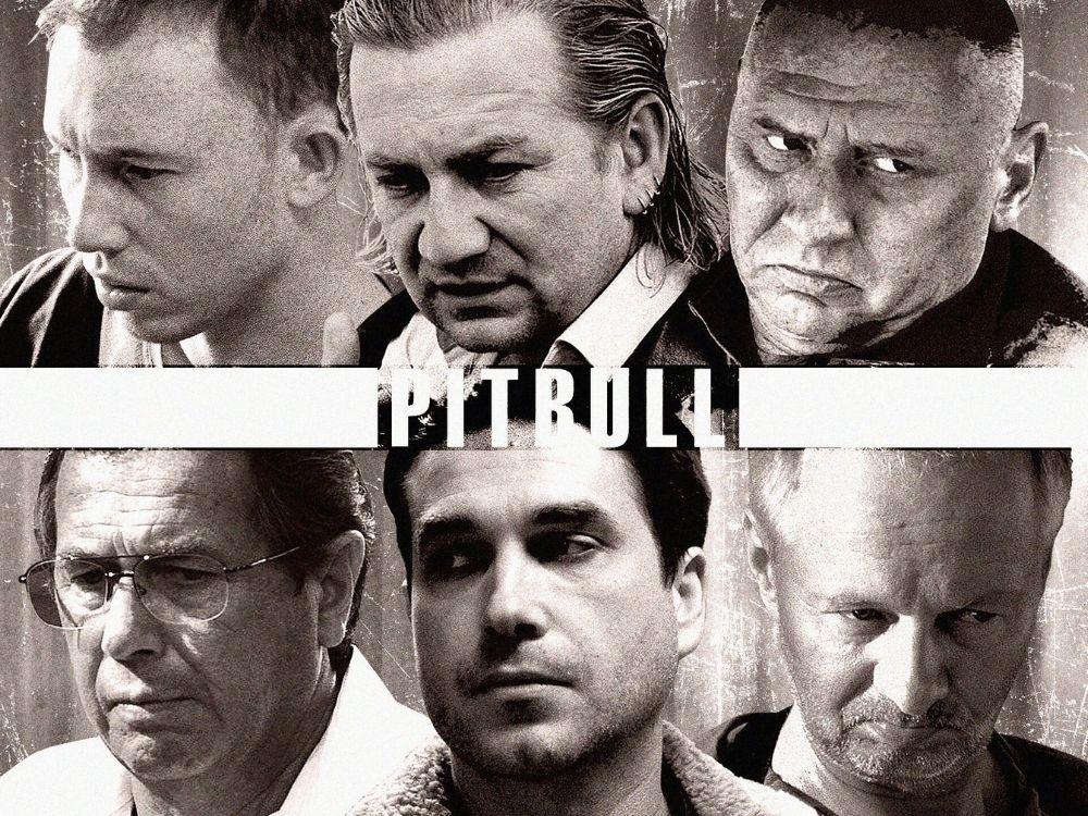 Pitbull serial online - opis serialu, obsada, odcinki, zwiastun, sezony. Gdzie oglądać?
