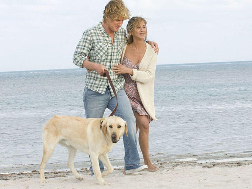 Marley i ja (2008) online - opis filmu. Gdzie oglądać?