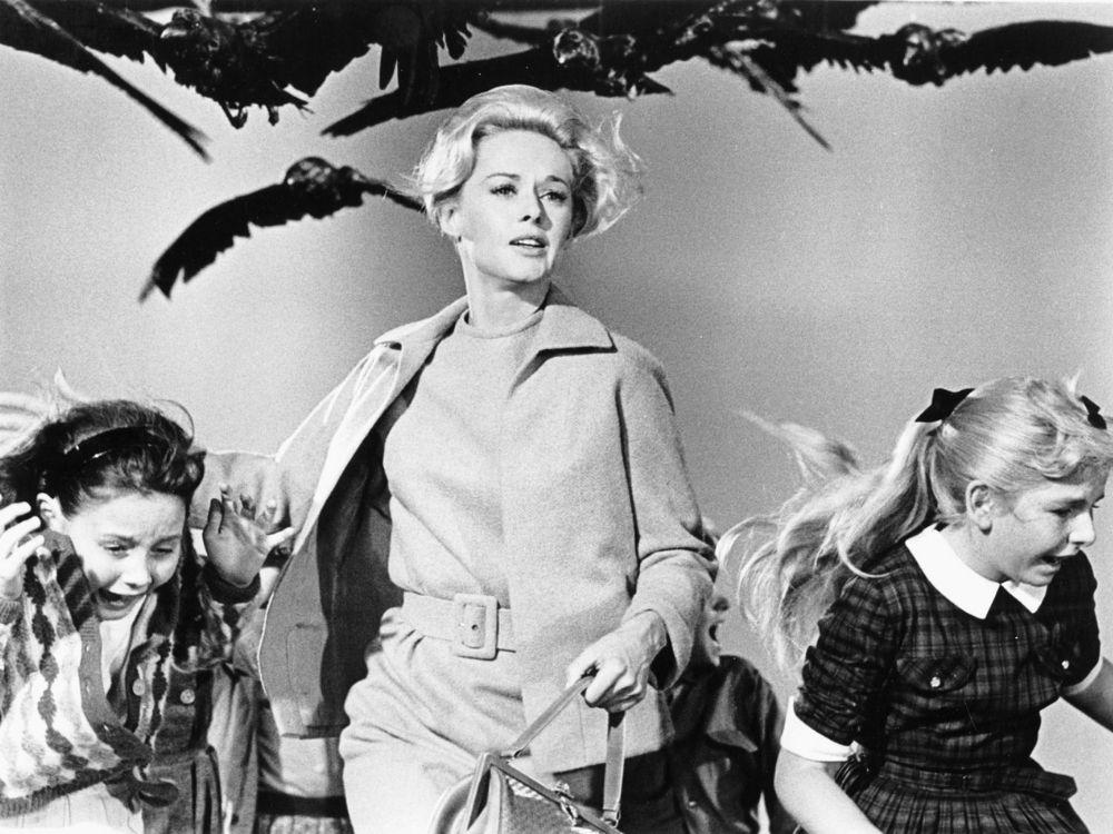 Ptaki (1963) online | Obsada, fabuła, zwiastun