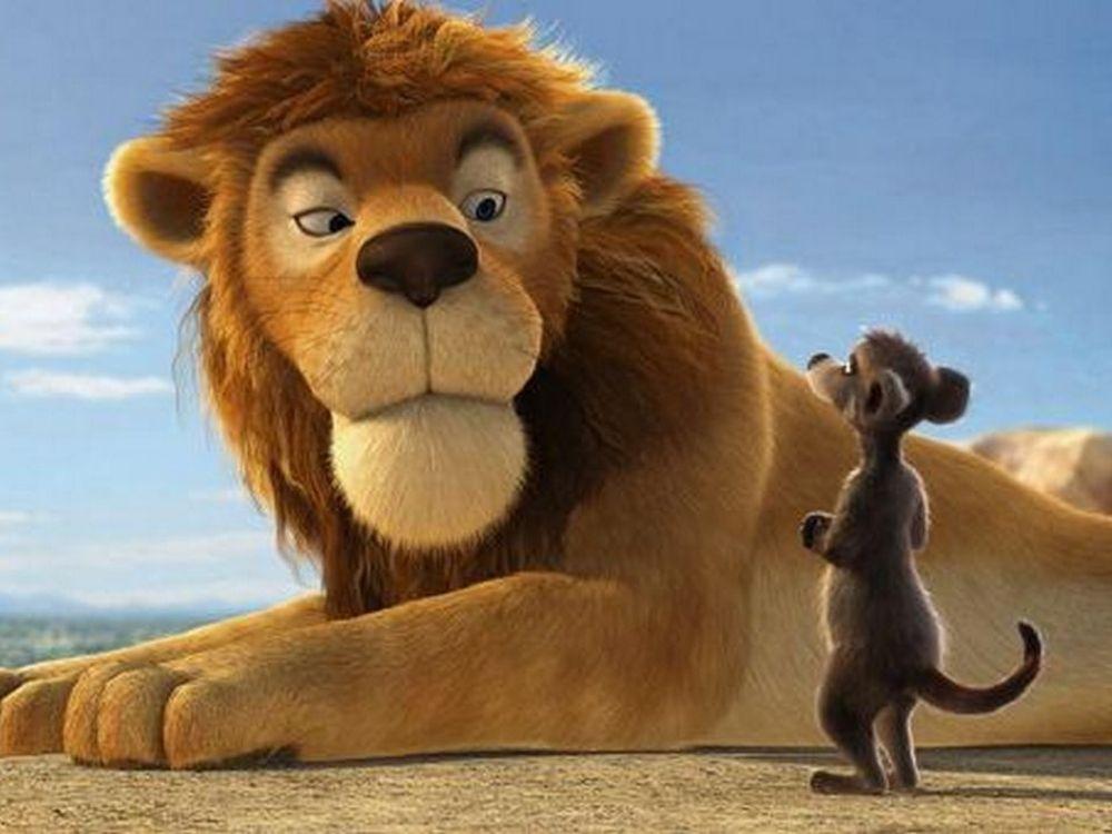 Safari 3D (2010) online   Obsada, fabuła, zwiastun