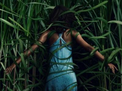 W wysokiej trawie - niebezpieczeństwo kryje się właśnie tam