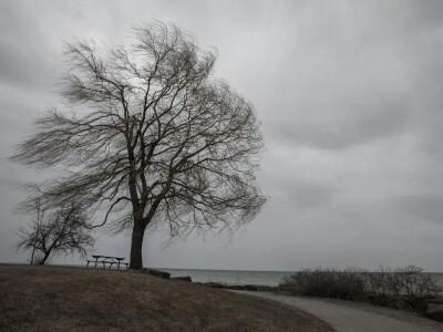 Pogoda na dziś i na jutro – uwaga na silne porywy wiatru