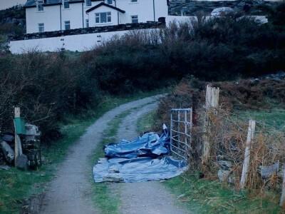 Sophie: Morderstwo w West Cork - walka o sprawiedliwość
