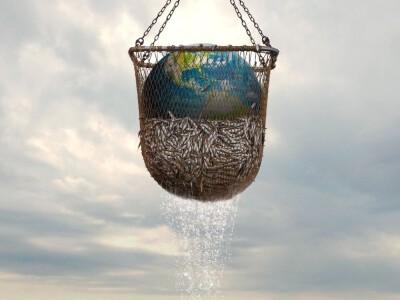 Ciemne strony rybołówstwa - jak niszczymy planetę?
