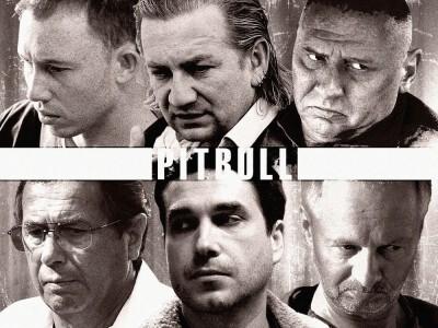 Pitbull (serial 2005) - praca warszawskiego wydziału zabójstw