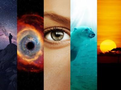 Kosmos - wszystko, co chcieliście wiedzieć