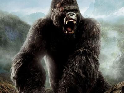 King Kong - wyspa pełna niesamowitych istot