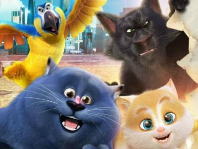 Sekretny świat kotów - animowana przygoda sympatycznych zwierzaków