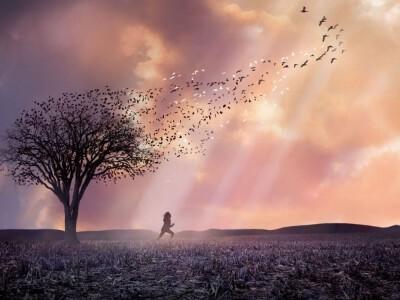 Nostalgia anioła - obserwuje bliskich po śmierci