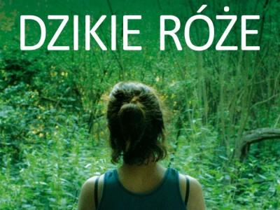 Dzikie róże - romans i zaginięcie dziecka
