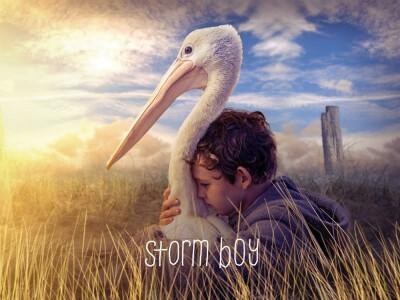 Chłopiec z burzy - przyjaźń chłopca i pelikana