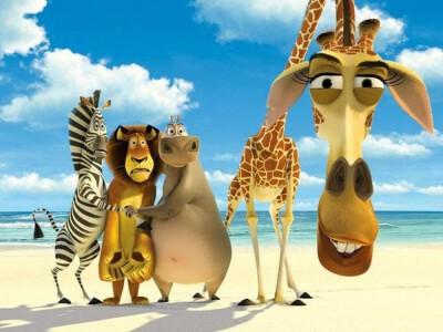 Madagaskar - dzika przygoda zwierząt