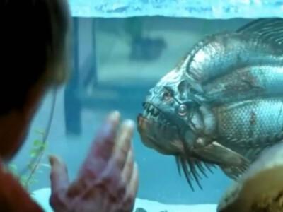 Pirania 3D - krwiożercze bestie zaczynają żer