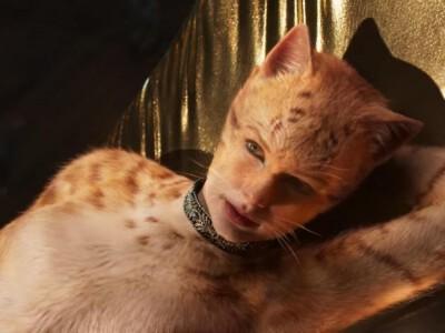 """""""Koty"""" - Jason Derulo sądził, że film okaże się prawdziwym hitem"""