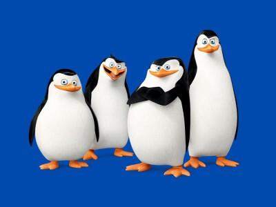 Pingwiny z Madagaskaru  – niesamowite przygody sympatycznych nielotów