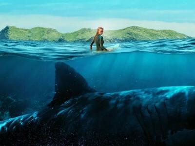 183 metry strachu - niebezpieczne spotkanie z rekinem