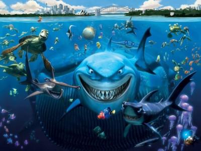 Gdzie jest Nemo? - nie podda się, dopóki go nie znajdzie