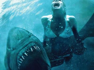 Noc rekinów - zagrożenie kryje się w głębinach