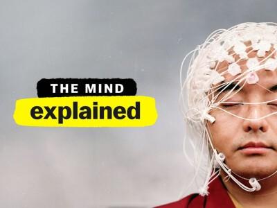 Wyjaśniamy tajemnice umysłu – poznaj lepiej swój mózg i psychikę