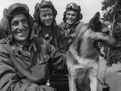 Czterej pancerni i pies - przygodowy serial wojenny