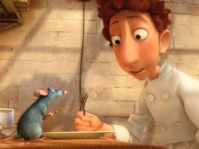 Ratatuj - co może zgotować szczur?