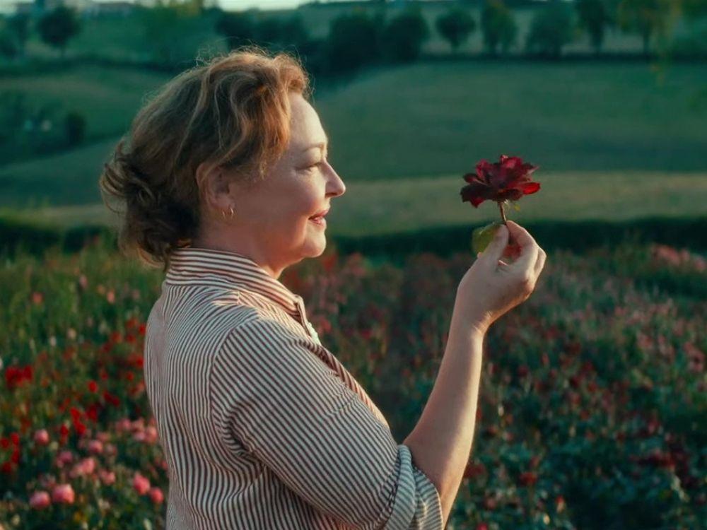 Usłane różami (2020) online - opis filmu. Gdzie oglądać?