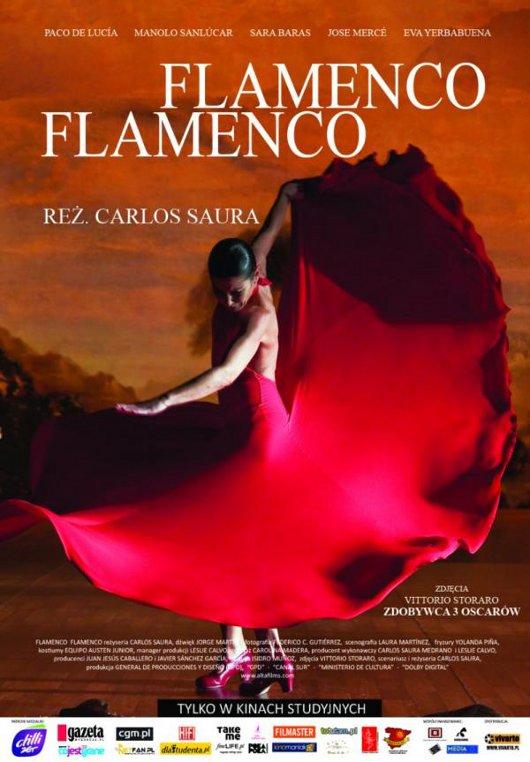 Flamenco, flamenco (2010) online. Obsada, opinie, opis fabuły, zwiastun